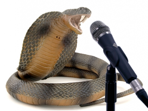 Speaking lessons from snakes