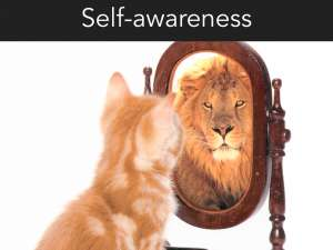 Self awareness an Emotional Intelligence necessity