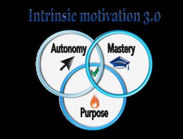 intrinsic motivation 3.0 autonomy mastery and purpose