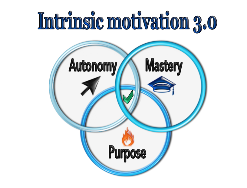 intrinsic motivation 3.0 autonomy mastery and purpose