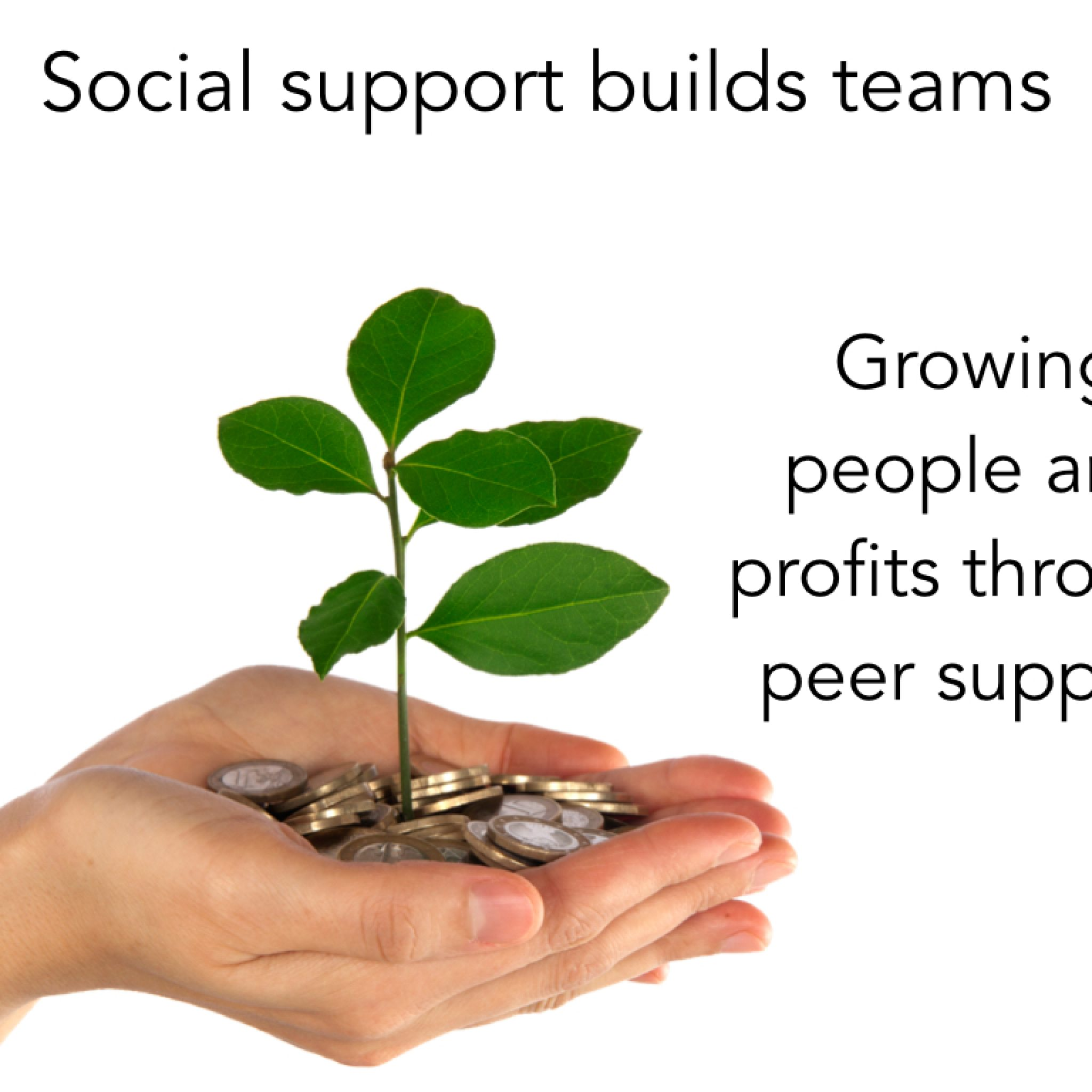 Social support builds teams