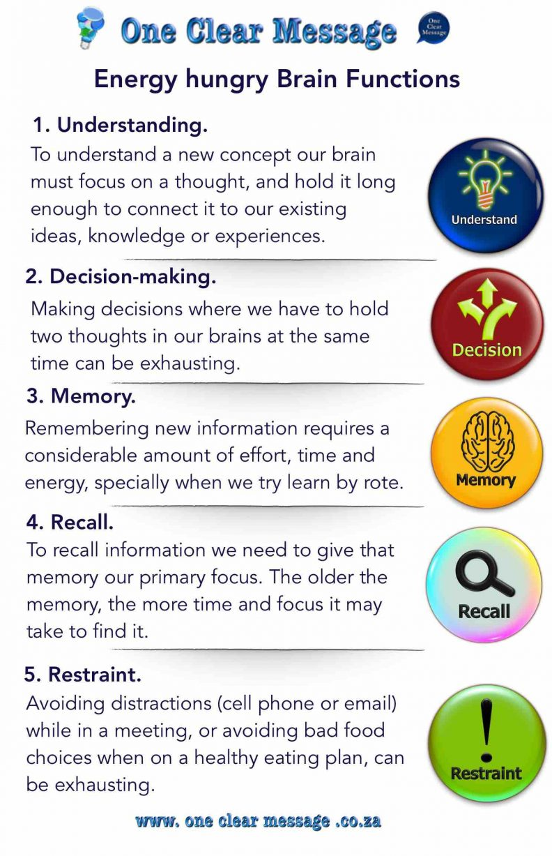 Energy hungry Brain Functions Infographic