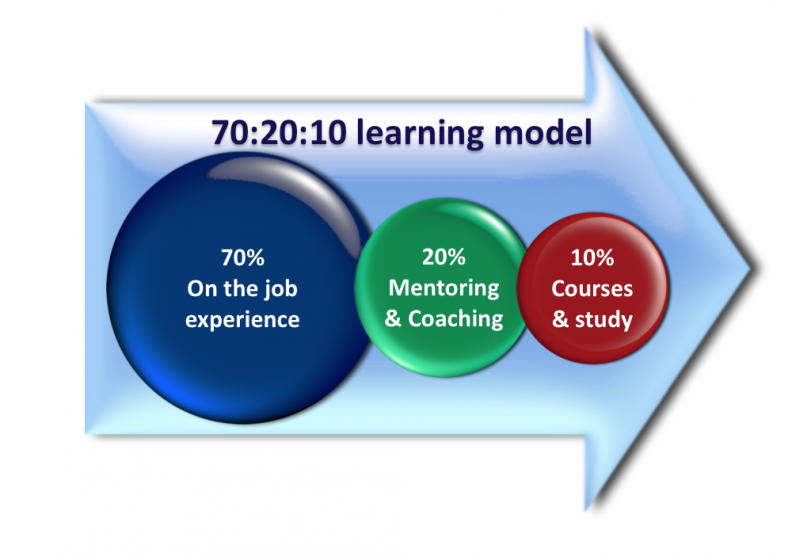 70/20/10 rule learning style